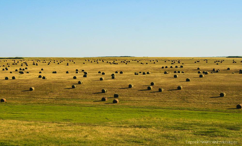 Драйверы оптимизма по Путину: зерно и фермеры вместо нефти и газа