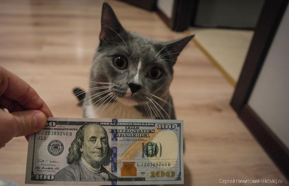 Платить налоги с переводов на карточку?