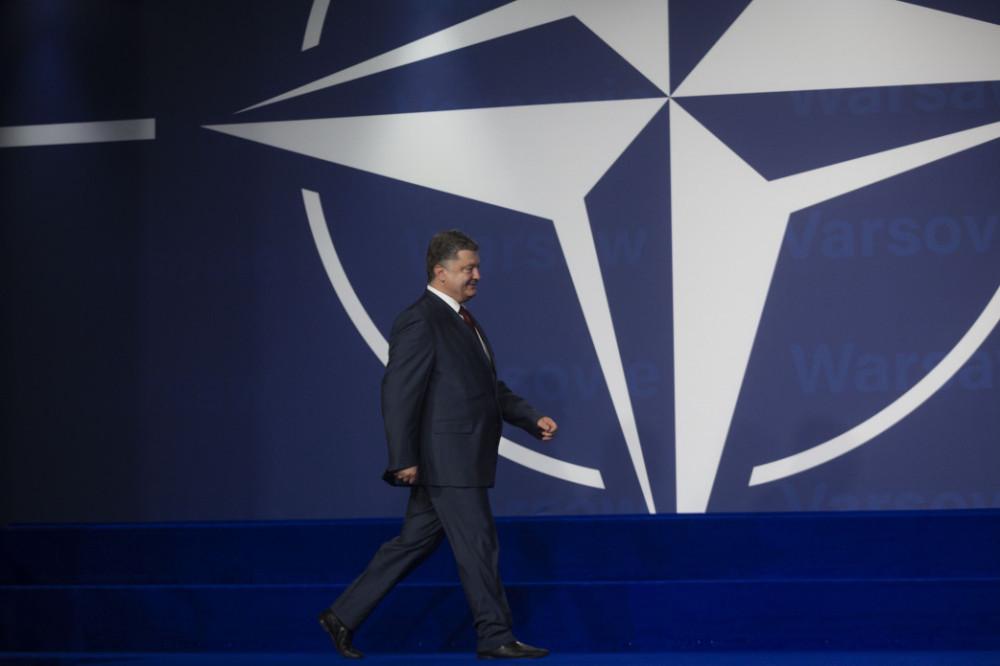 Хряк хочет научить НАТО воевать с Россией