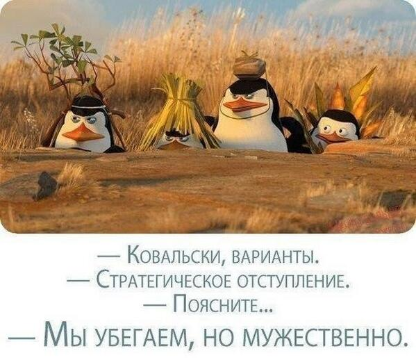 boedycbiuaax_4i