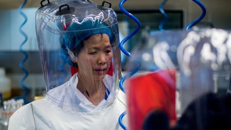 Ши Чжэнли в лаборатории Уханьского института вирусологии