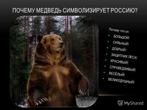 Медведь России_2