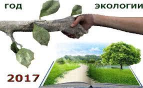 Год 2017 экологии