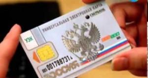 Чипирование электронный паспорт