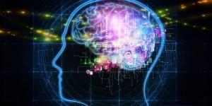 Мозг интернет_1