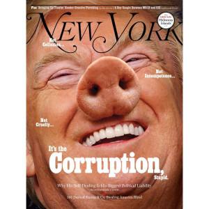 Политика Трамп свинья