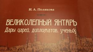 Янтарь книга Поляковой