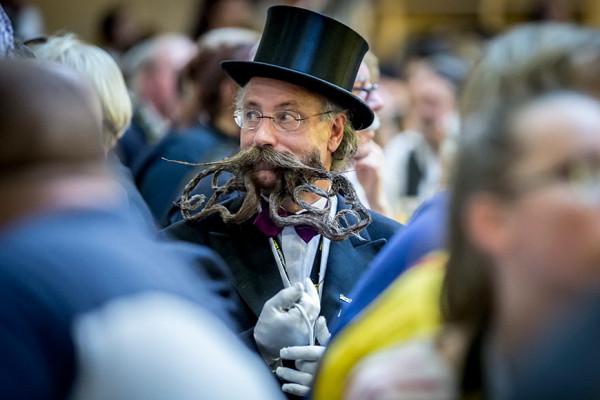 Борода с синей волосиной jpeg