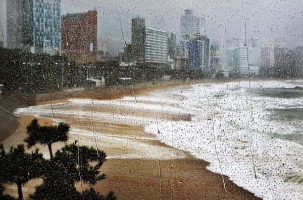 Дождь 3 Корея