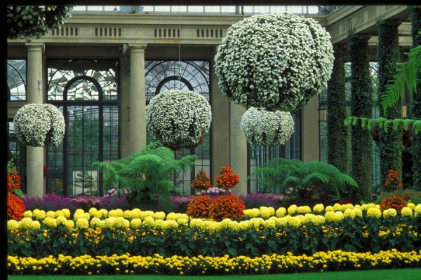 Сад Дюпона 2