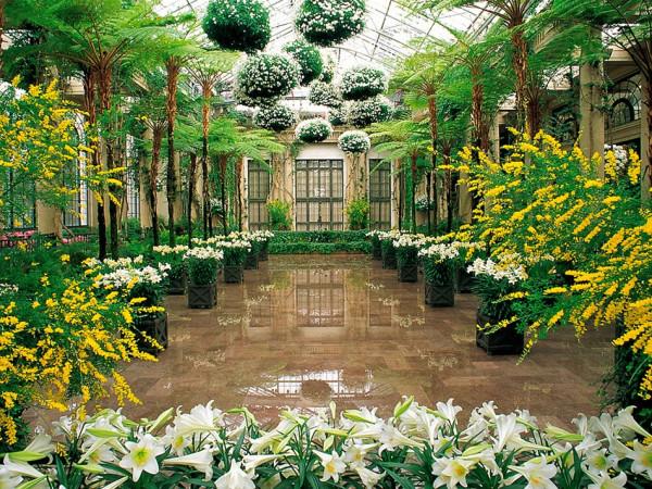 Сад Дюпона 1