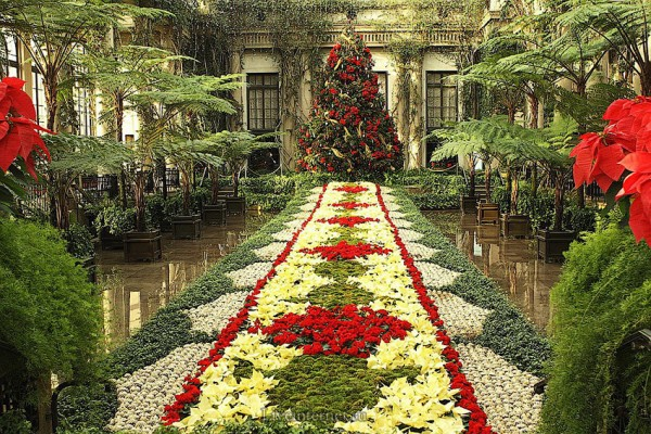 Сад Дюпона 3