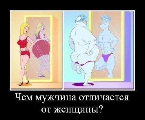 Зеркало Кривое