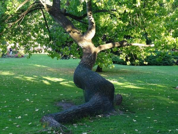 Дерево-Эрос 1
