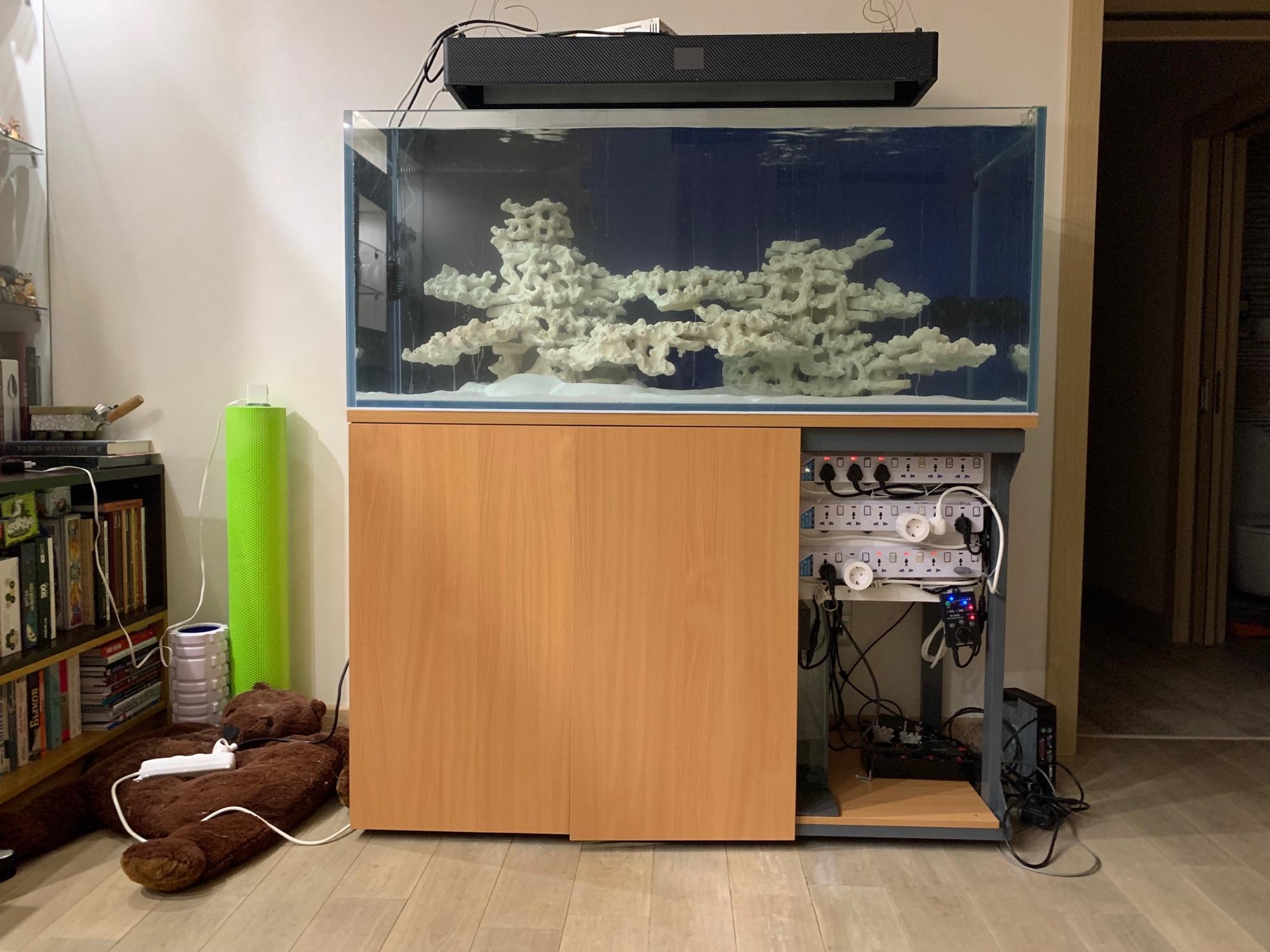 Ну и для истории текущее состояние нового аквариума. В пятницу-субботу налили. Вчера добавили песочка и засолили. Ждём! #морскойаквариум #домашнееморе