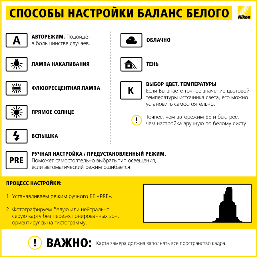Инфографика 2 способы настройки баланса белого