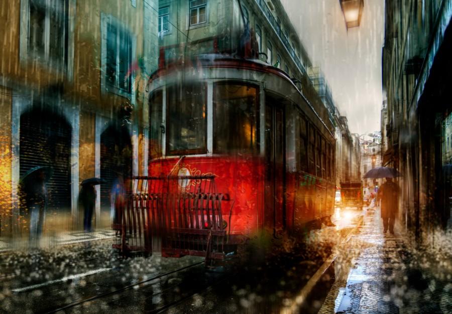 ночные трамваи бесплатно