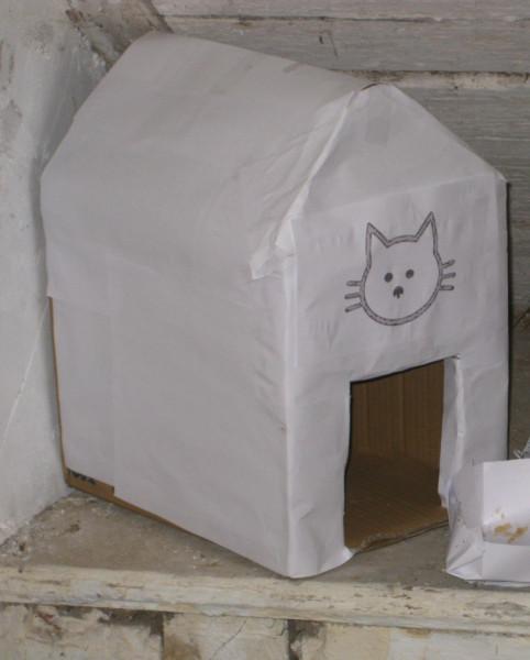 котя пентхауз