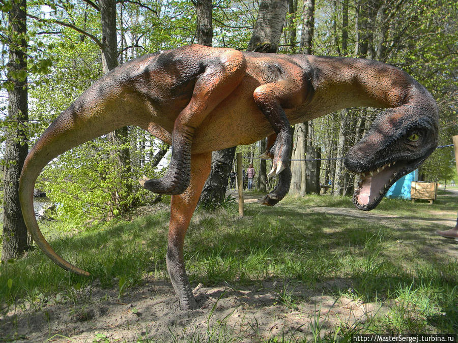 Park-dinozavrov-v-Radaylya