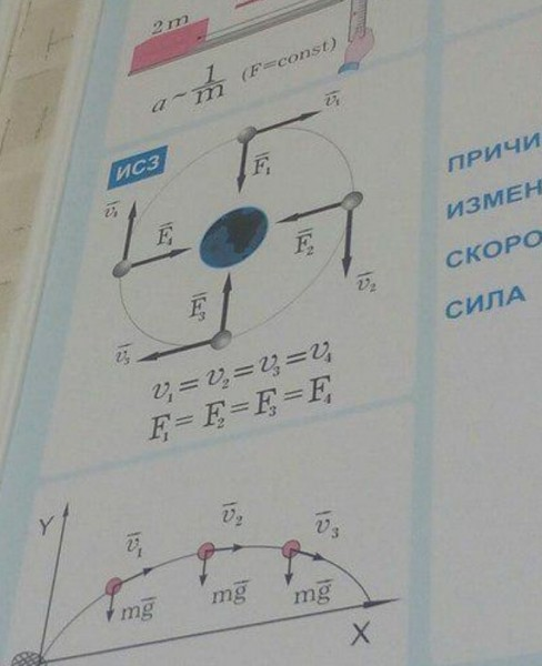 физики фошизики