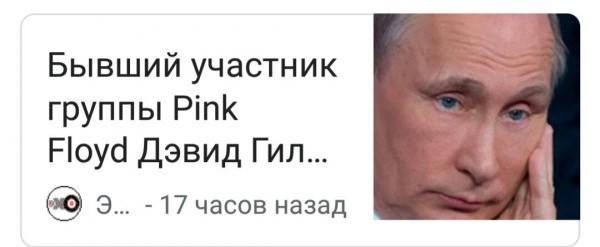 джвид