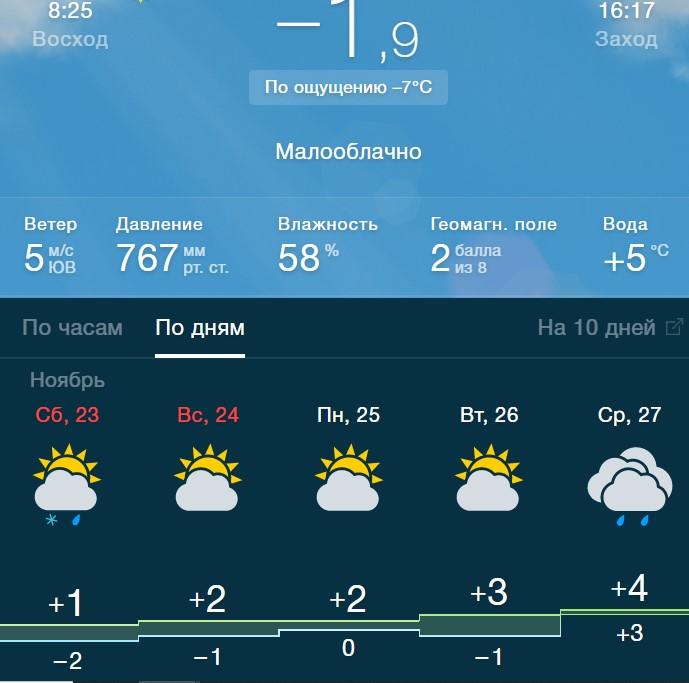 погод ноябрь 2019