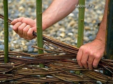 Из чего и как сделать плетень на даче своими руками