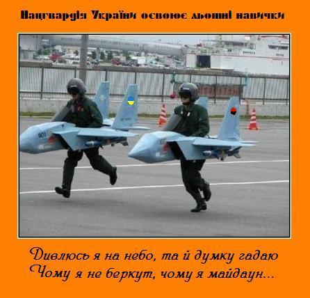 нагвардия украины