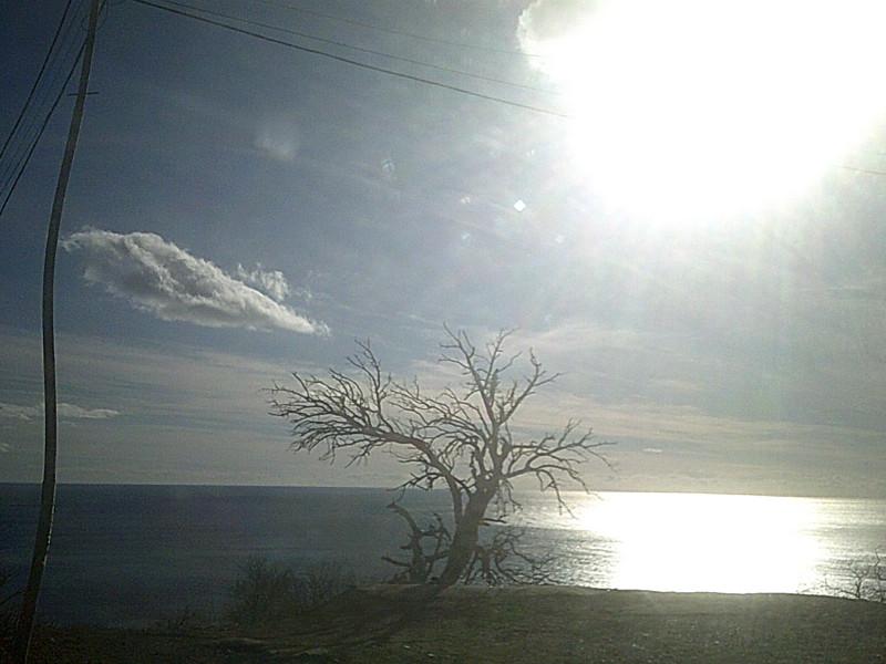 1 января. Море утром