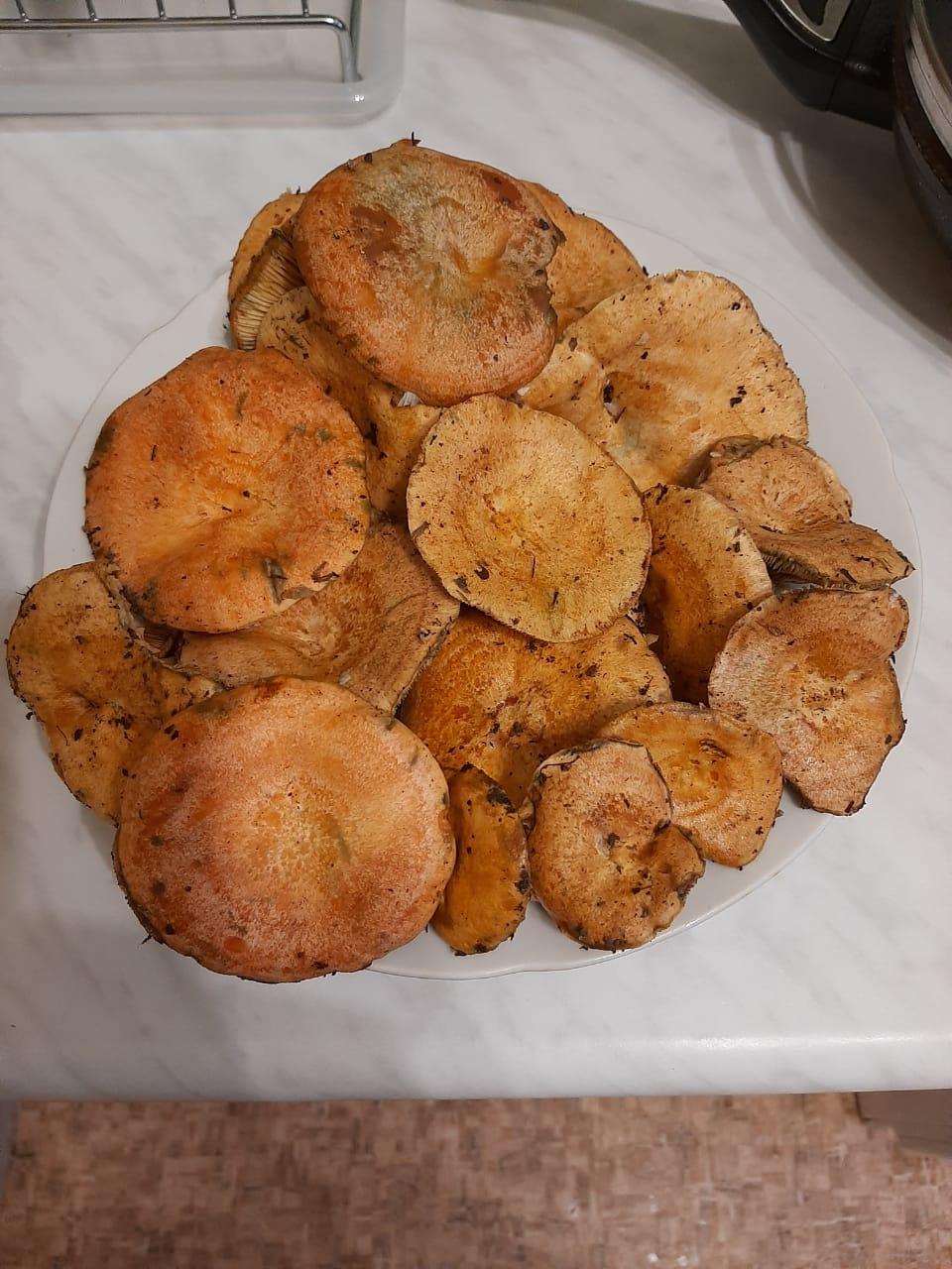 не знаю что за грибы