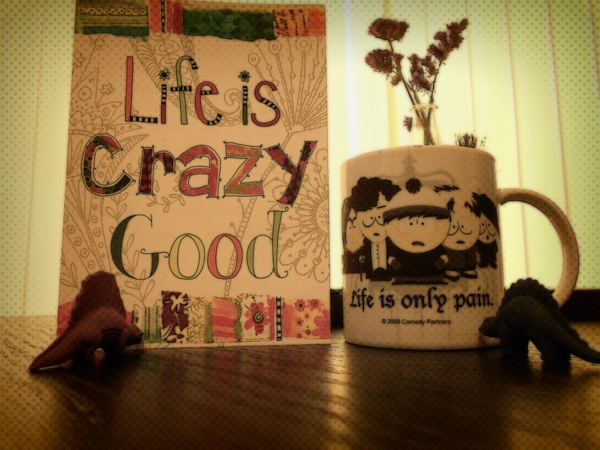 life-is-crazy-good-but-painful