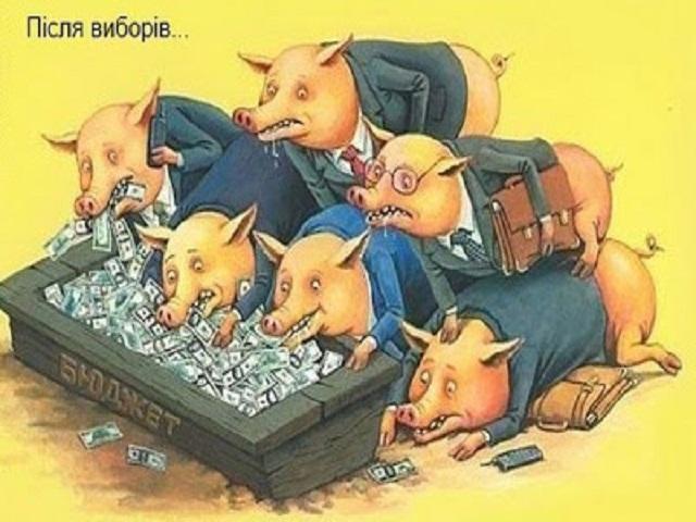 свиньи у корыта