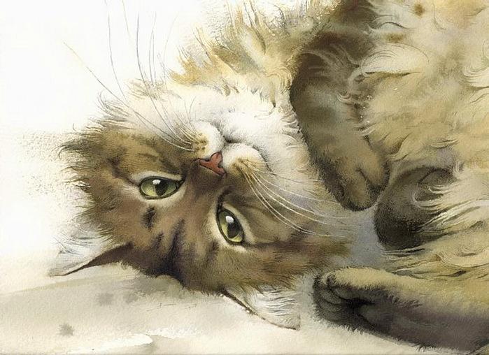 кошка 7
