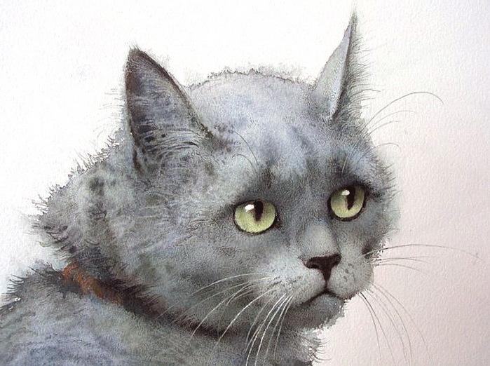 кошка 8