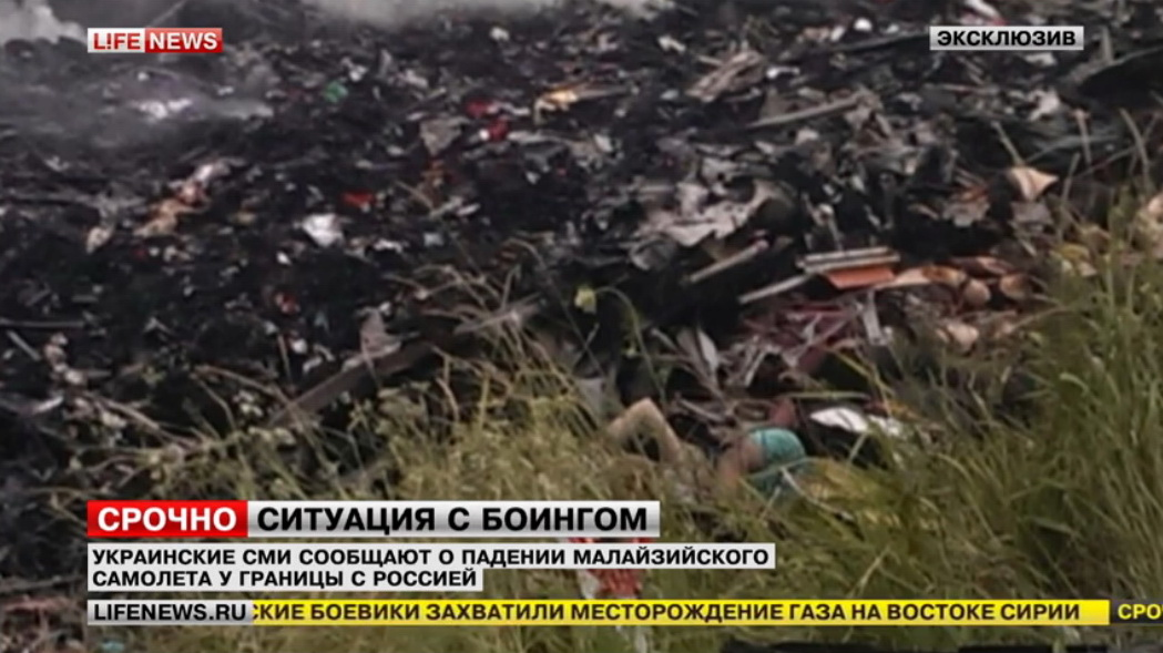 украинский штурмовик сбил малазийский самолёт