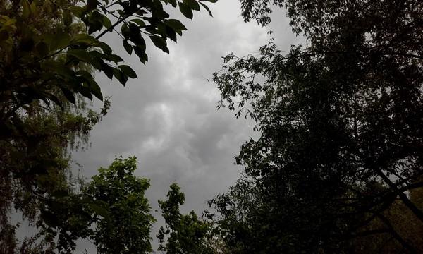 Ураган 29 мая 2017 года в Москве ЗАО