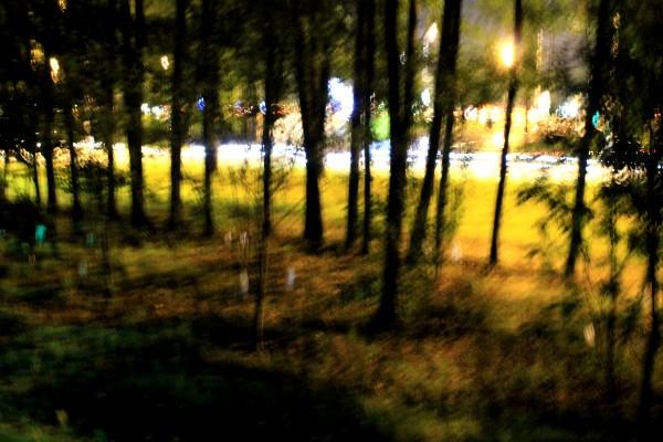 Поклонка 2015 Поклонная гора