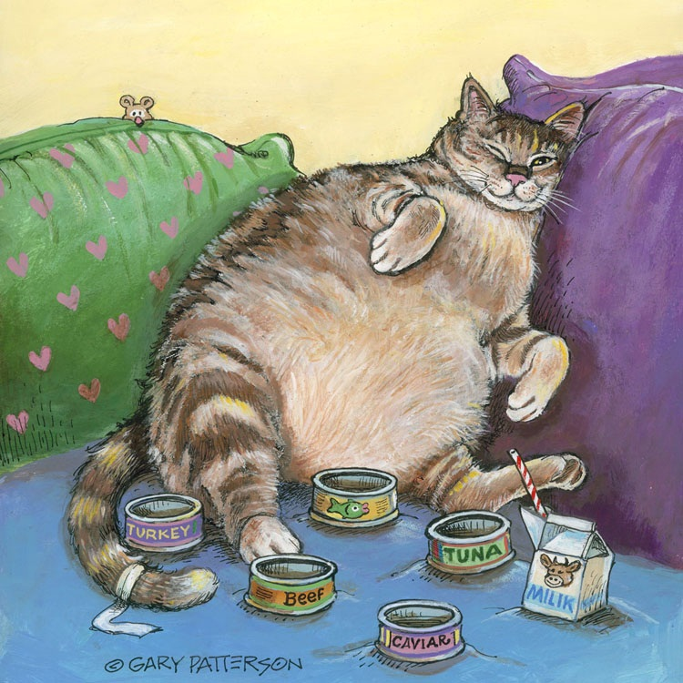 Gary Patterson dogs eat cats dine