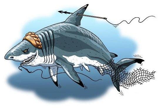 Тимошенко -акула