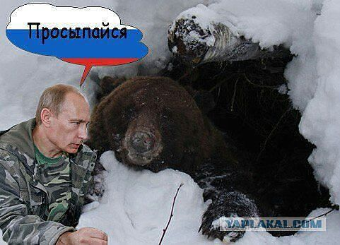 Путин просыпайся