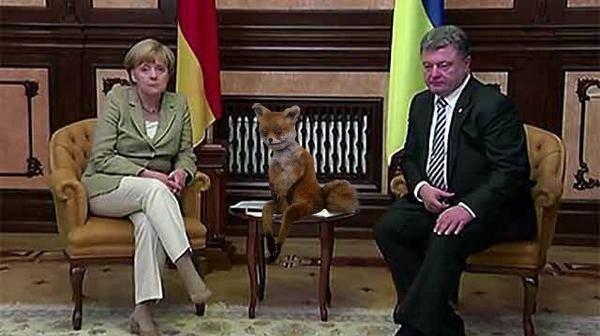 параша и меркель