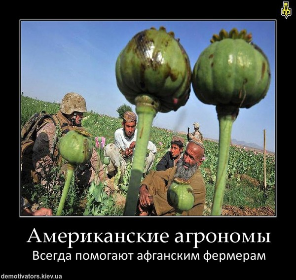 агрономы
