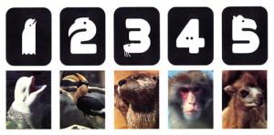 minnesota-zoo-logo-02