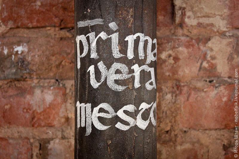 Primavera Mesto