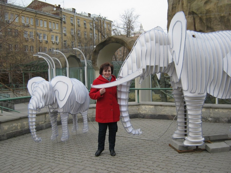 еще слоны