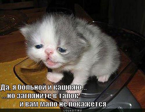 zaglyanite-v-tapok_1304080125