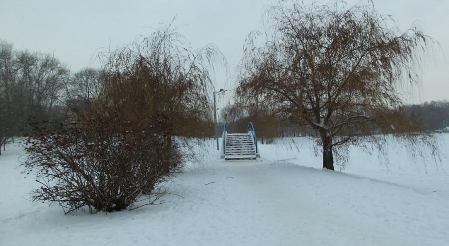 парк Дружбы-2