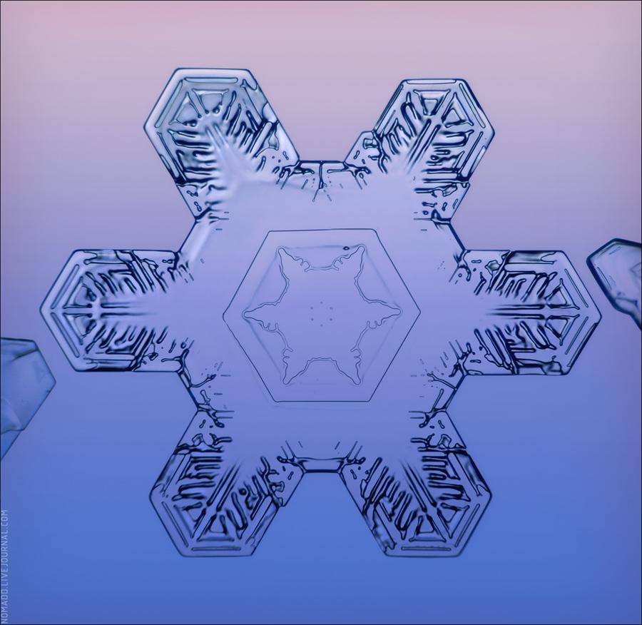 snow900