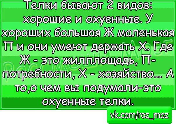 579086_393260254076518_339114551_n