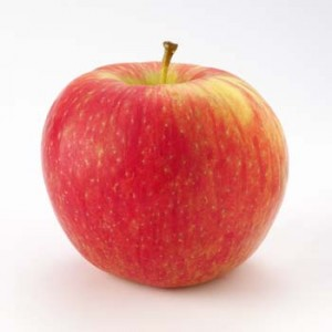 Honeycrisp-picture
